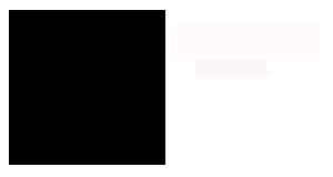 PsiHoops Logo